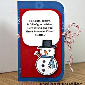 You're Snow Wonderful Stamp Set
