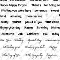 Sentiments for All Occasions Stamp Set